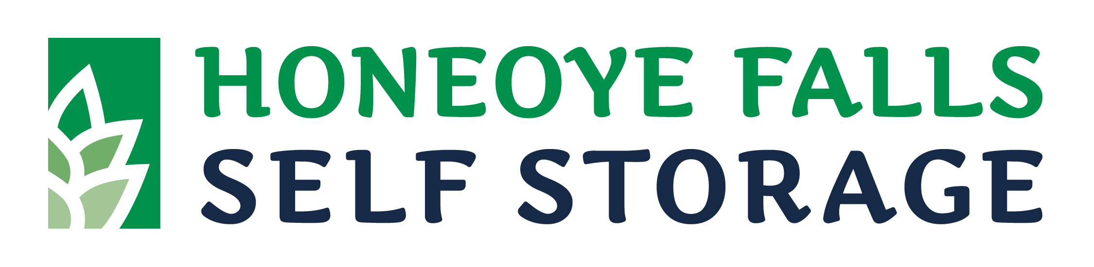 Honeoye Falls Storage Website Logo